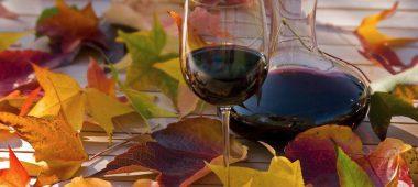 Осенняя ярмарка «Вино и сыр»